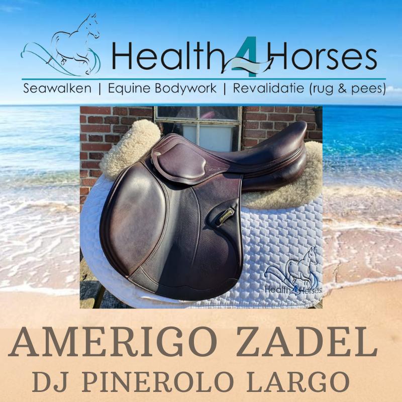 Amerigo DJ Pinerolo Health4Horses