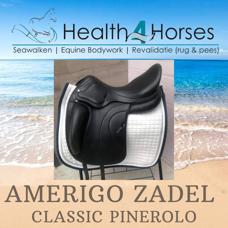 Amerigo Classic Health4Horses