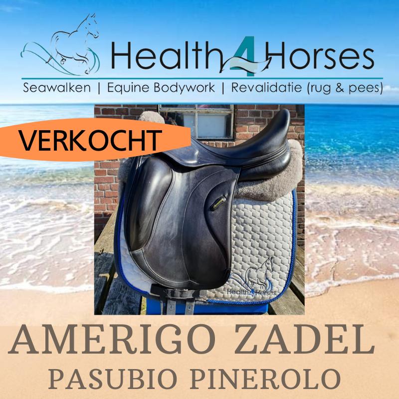 Amerigo Pasubio pinerolo - Health4Horses