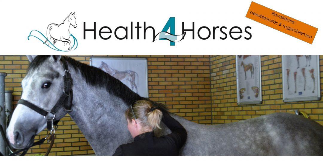 Health4Horses kalender