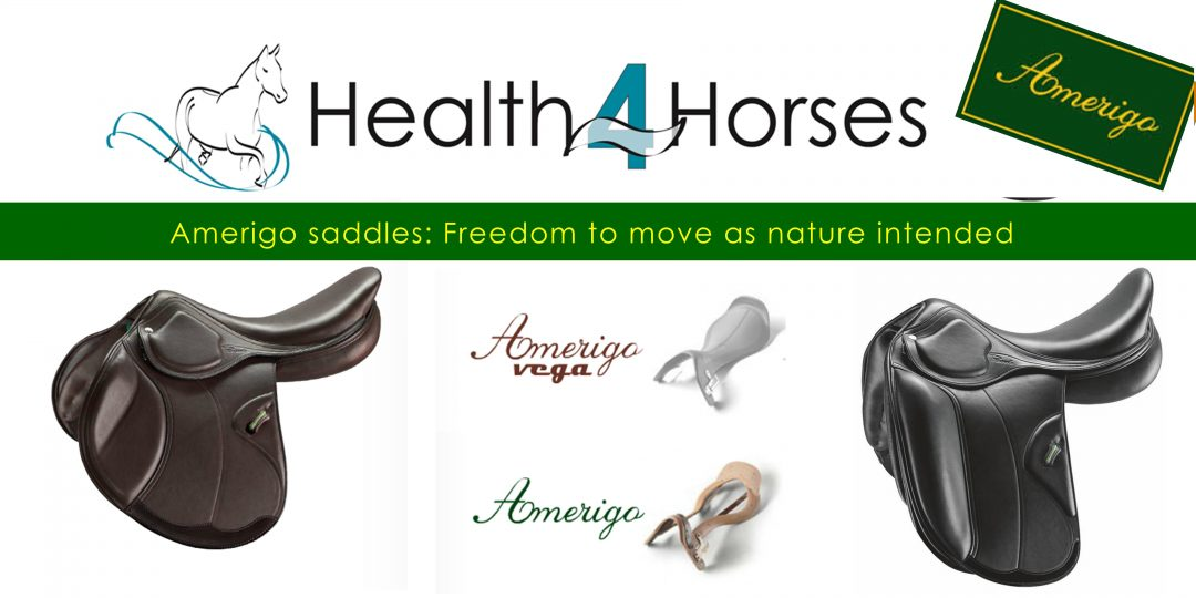 Health4Horses & Amerigo Saddles