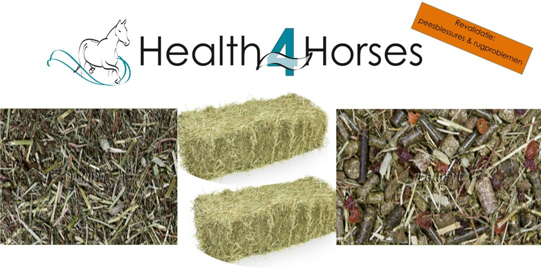EquiFyt voer - Health4Horses