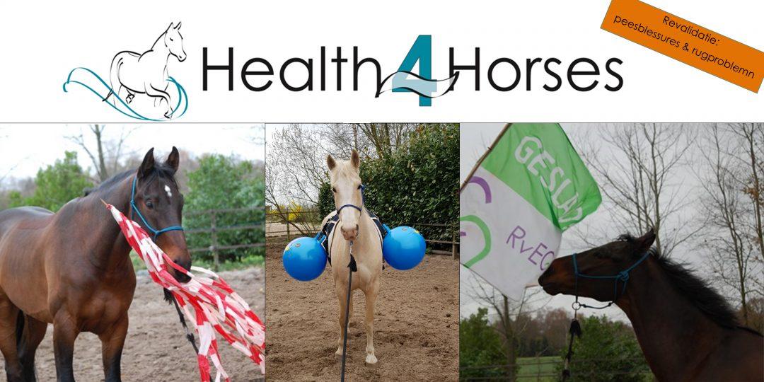 Health4Horses Horsmanship