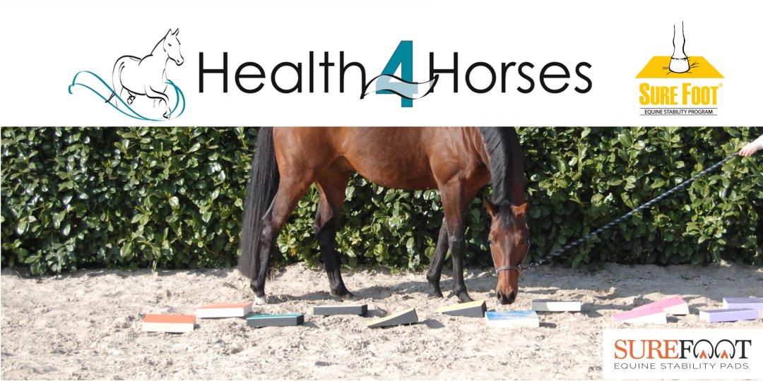 Health4Horses Sure Foot Stability Program